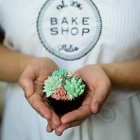 Bake Shop Studio