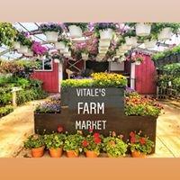 Vitale's Farm Market