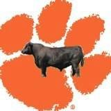 Clemson University Edisto Forage Bull Test