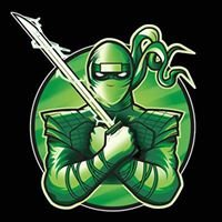 Green Ninja Electrical