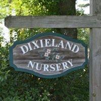 Dixieland Nursery