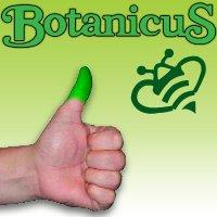 Colorfulplanters.com is now Botanicusgreen.com