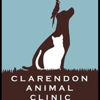Clarendon Animal Clinic