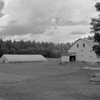 Holland Farm CSA