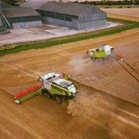 Sellars Agriculture Ltd.