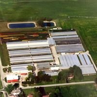 Lievens Farms & Greenhouses Inc.