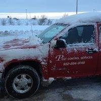 Pep's Pest Control Services / Pest Control Services
