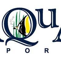 Aqua Imports