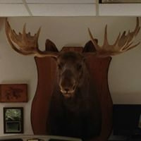 Birch Run Moose Lodge