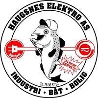 Haugsnes Elektro AS