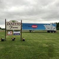 DiNitto Farms