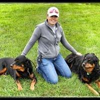 Dog Gone Pet Services