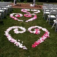 Like No Other Wedding Designs