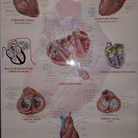 Cardiovascular Consultants of Nevada