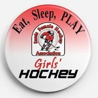 Sault Female Hockey Association