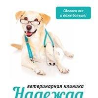 Ветеринарный госпиталь Надежда