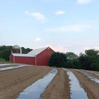 Lyon Creek Farm Market