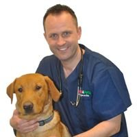 Vets4Pets Caerphilly
