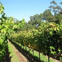 Soda Creek Vineyards