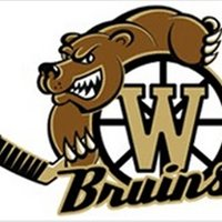 Winfield Minor Hockey Association