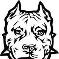 Bully Dog Metals