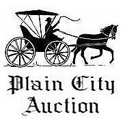 Plain City Auction