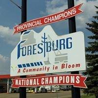 Village of Forestburg