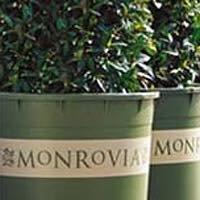 Monrovia Growers Nurseries - Granby, CT