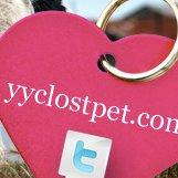 YYC Lost Pet