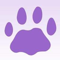 Back to Basics dog obedience