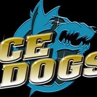 IceDogs Summer Hockey School