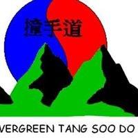 Evergreen Tang Soo Do Academy