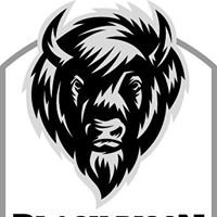 Black Bison Beard Co.