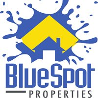 Blue Spot Properties