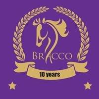 Bracco Riding School LTD