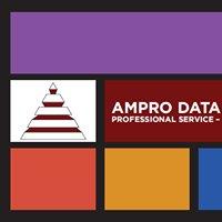 Ampro Data Services, Inc.