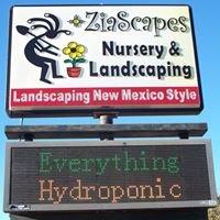 Zia Scapes hydroponics