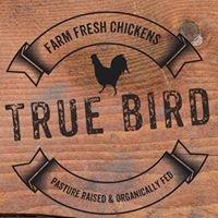 True Bird