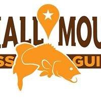 Smallmouth Bass Guides