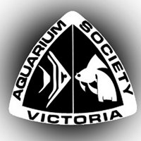 Aquarium Society of Victoria
