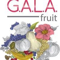 Gala Fruit