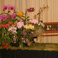Orchid Society of East Tennessee