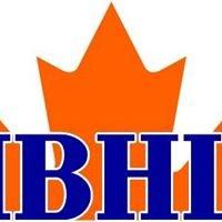 Interior Ball Hockey League