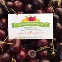 Souto Family Orchards