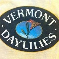 Vermont Daylilies