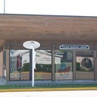 Vulcan Municipal Library