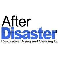 After Disaster Ltd
