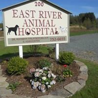 East River Animal Hospital
