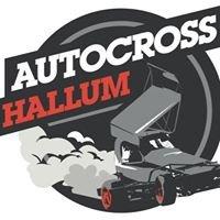 Autocross Hallum