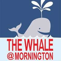 The Whale at Mornington